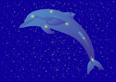 Constellation of the Dolphin Royalty Free Stock Image