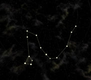 Constellation is Dragon. Star map of sky. Constellation of Dragon. Near-polar constellation of the North hemisphere of sky Royalty Free Stock Images