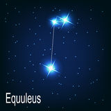 The constellation Equuleus star in the night Stock Images