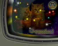 Constellation Gemini Royalty Free Stock Photo
