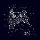 Constellation, hibou Photos libres de droits