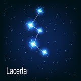 The constellation Lacerta star in the night sky. Royalty Free Stock Image