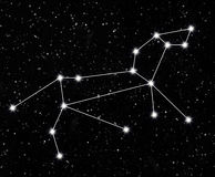 Constellation Lion Photographie stock