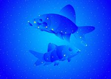 Constellation Pisces Stock Photography