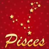 Constellation Pisces over red starry background vector illustration
