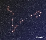 Constellation pisces Stock Image