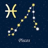 Constellation Pisces zodiac horoscope astrology stars night illu. Stration vector Stock Images