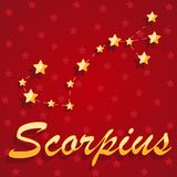 Constellation Scorpius over red starry background vector illustration