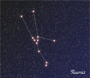 Constellation taurus Stock Photos