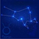 Constellationtaurus Stock Photography