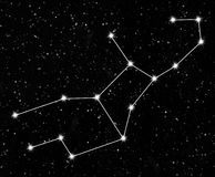 Constellation Virgo vector illustration