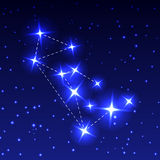 The Constellation Of The Wolf in the night starry sky. Vector illustration of the concept of astronomy. Royalty Free Stock Photos