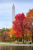 Constitution Gardens Washington DC in Autumn Stock Photos