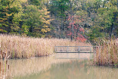 Constitution Marsh Stock Image