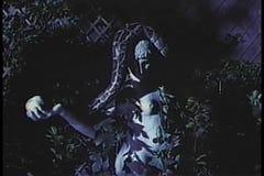 Constrictor горжетки стучая с руки статуи акции видеоматериалы