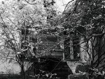 construção abandonada velha na região de Zhytomyr, no outono 2018 & no x28; casa Tereshchenkov& x29; imagem de stock