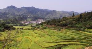 Construção da terra de Fujian Imagem de Stock Royalty Free