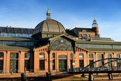 Construção de Fischmarkt (mercado de peixes), Hamburgo, Alemanha Imagem de Stock Royalty Free