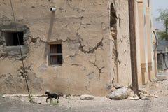 Construção de Omã Fotografia de Stock
