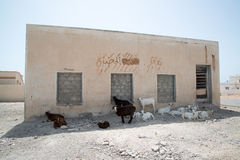 Construção de Omã Imagens de Stock