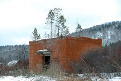 Construção de tijolo velha em que as árvores já estão crescendo imagens de stock