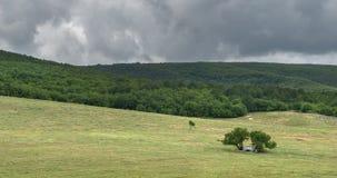 Construção defensiva perto de uma árvore no campo Fotografia de Stock