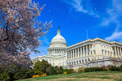 Construção do Capitólio dos E.U. - Estados Unidos do Washington DC Imagem de Stock