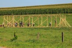 Construção do celeiro de Amish fotos de stock royalty free