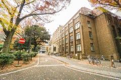 A construção e a estrada dentro da universidade do Tóquio no outono temperam Japão recolhido fotografia de stock royalty free