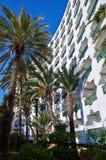 Construção e palmeiras do hotel Imagens de Stock