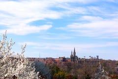 Construção gótico da universidade de Georgetown na flor da mola Imagem de Stock Royalty Free