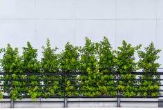 Construção moderna da decoração exterior preta do balcão do metal fotos de stock