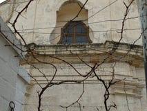 Construção típica em Puglia, Itália do sul, visto completamente as árvores foto de stock royalty free