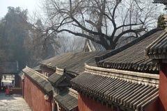 Construção tradicional em Shaolin Temple Imagem de Stock