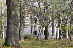 Construção velha abandonada imagem no parque imagens de stock