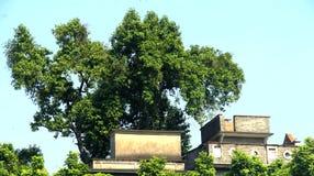 Construção velha da arquitetura do estilo chinês imagem de stock royalty free