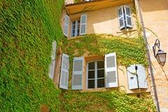 construção velha Videira-folheada em Aix-en-Provence, França Fotos de Stock Royalty Free