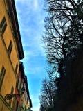 Construções, árvores, rua e céu coloridos fotos de stock royalty free