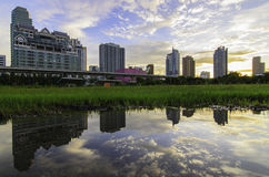 Construções da reflexão da água Fotografia de Stock