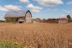 Construções de exploração agrícola abandonadas, Wisconsin, EUA imagem de stock