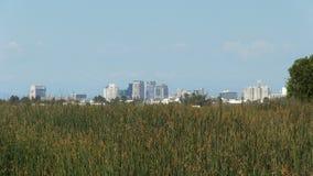 Construções distantes de Sacramento do campo dos juncos filme