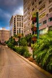 Construções e ajardinar ao longo de uma rua em Orlando, Florida Foto de Stock Royalty Free