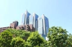 Construções e apartamentos do negócio no Tóquio de Japão Foto de Stock