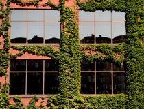 Construções modernas de Chicago: Reflexão da cidade Foto de Stock