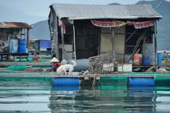 Construções na água em Vietname fotografia de stock
