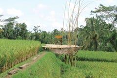 Construções, parques e viagem de Bali imagem de stock