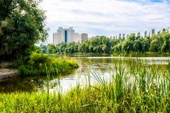 Construções perto da lagoa Foto de Stock Royalty Free