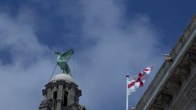 Construções tradicionais no pássaro do fígado do centro da cidade de Liverpool e na bandeira de St George video estoque