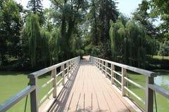 Construa-o uma ponte sobre! Fotos de Stock Royalty Free