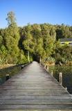 Construa uma ponte sobre o esticão na floresta Fotografia de Stock Royalty Free